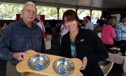Apple Fest takes off